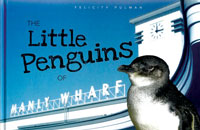 The Little Penguins of Manly Wharf